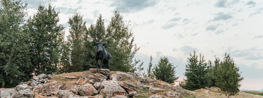black bull bozeman montana golf community